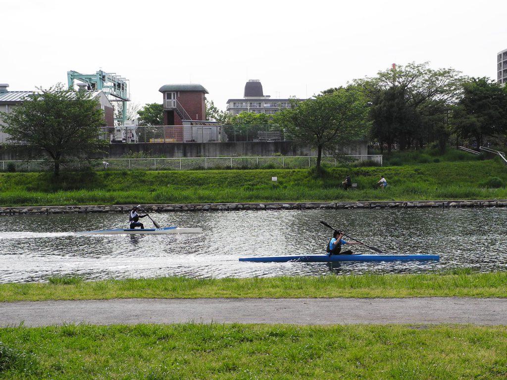 画像 旧中川のカヌー