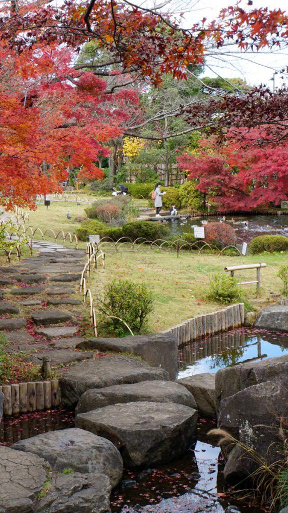 平成庭園の紅葉