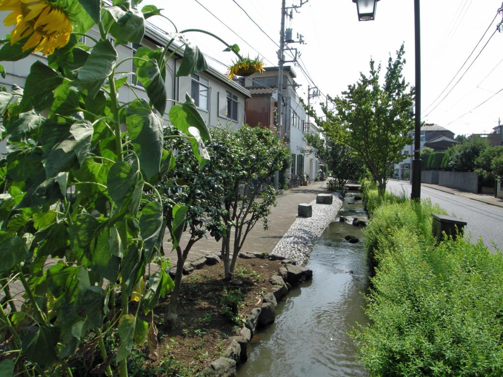 画像 興農親水緑道