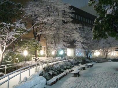 画像 区役所の雪景色