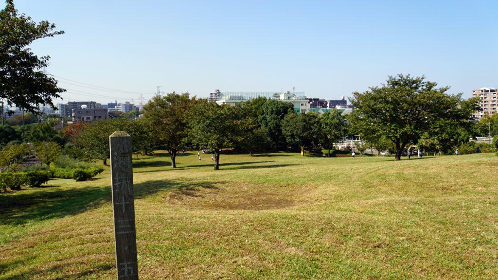 なぎさ公園の展望の丘