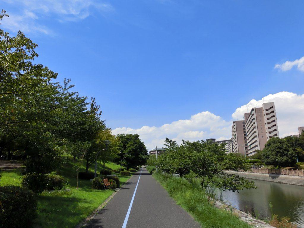 新左近川親水公園の夏の風景