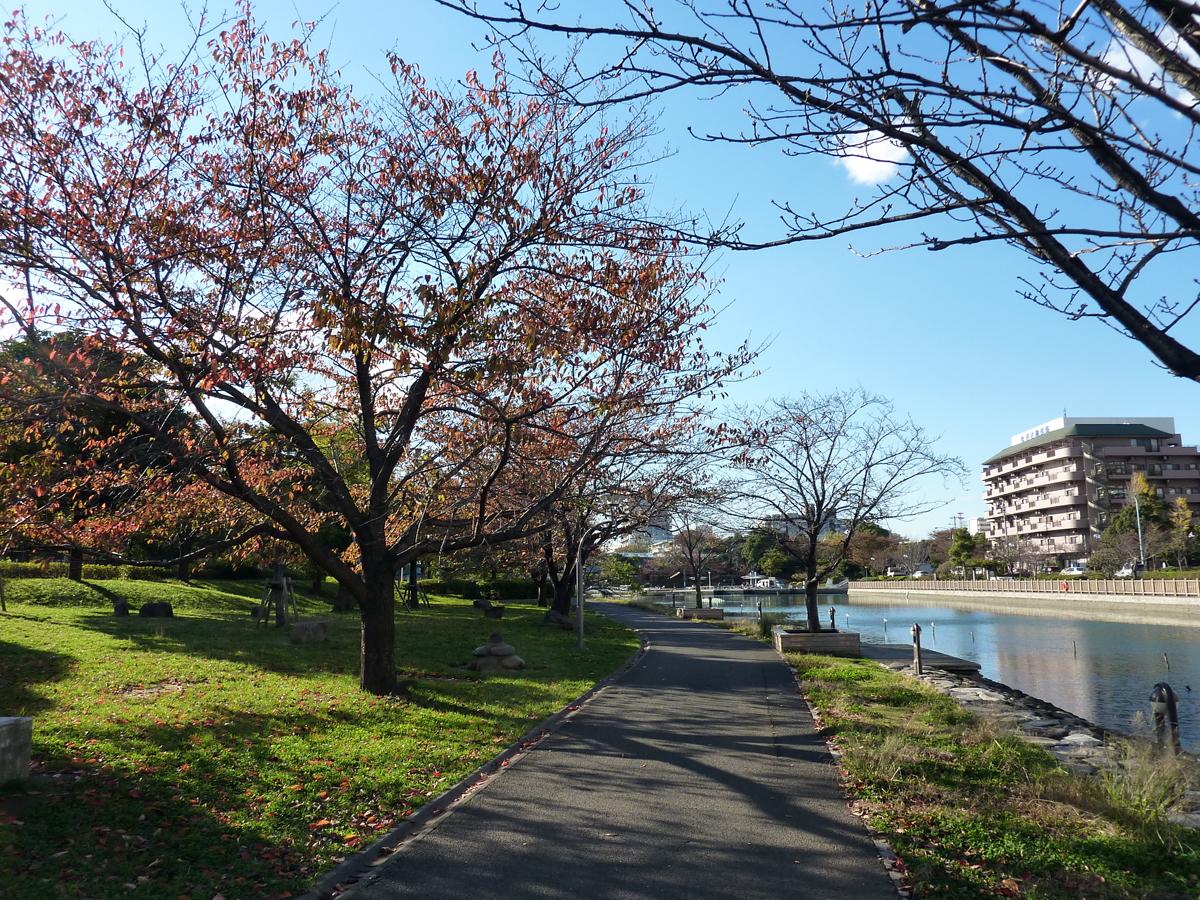 新左近川親水公園の秋の風景