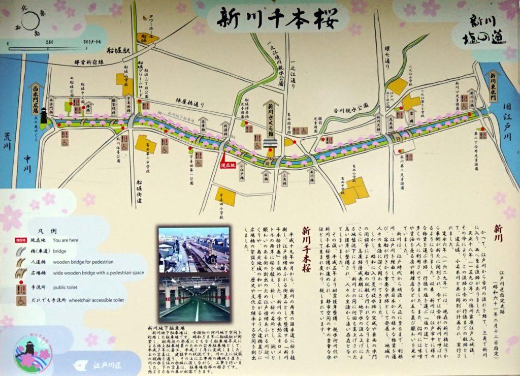 新川千本桜マップ