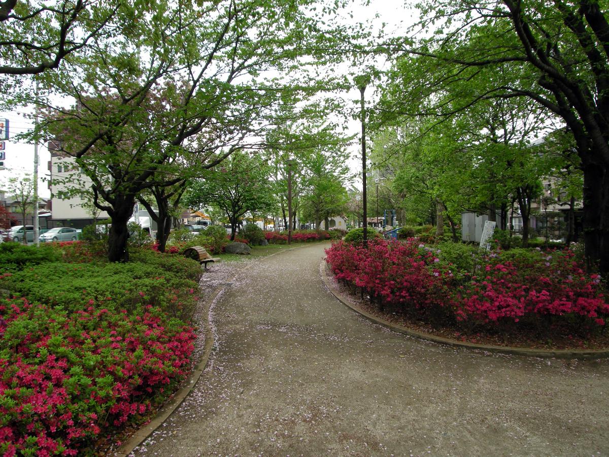 江戸川区 ツツジ公園
