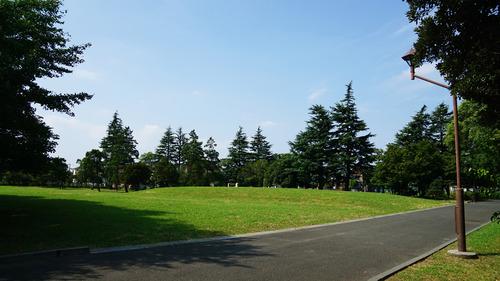 都立篠崎公園 夏の風景