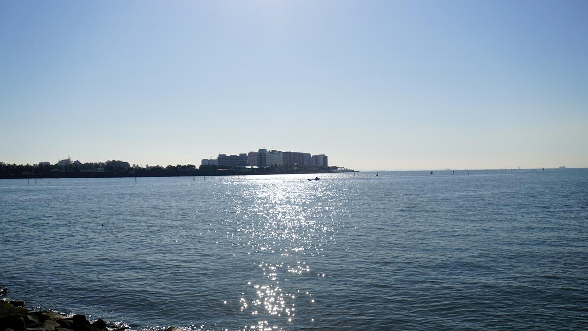 画像 旧江戸川の河口付近の風景