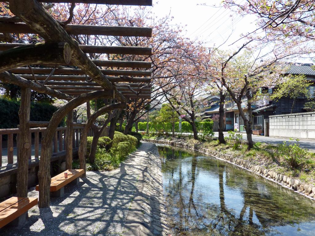 画像 古川親水公園の秋の風景