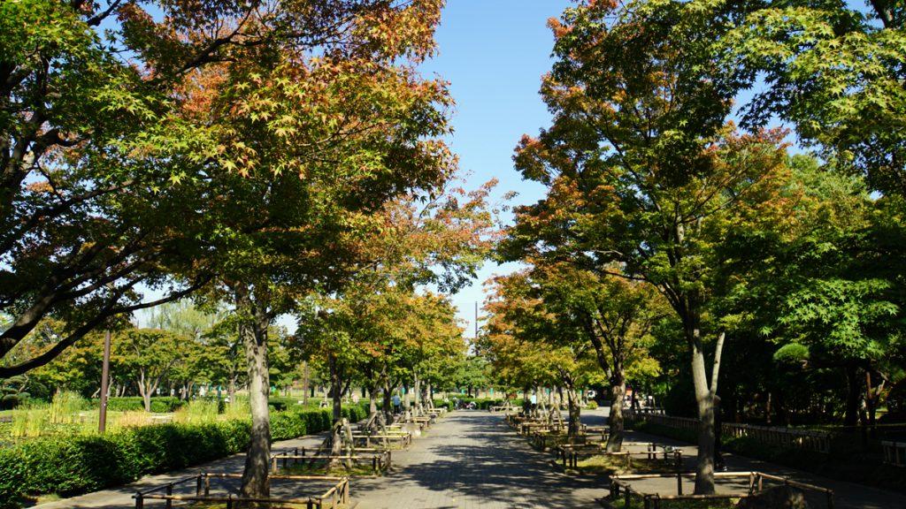 行船公園 秋の風景