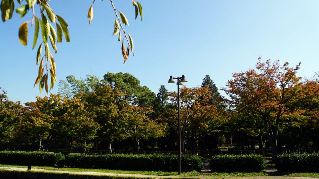 行船公園の秋の風景