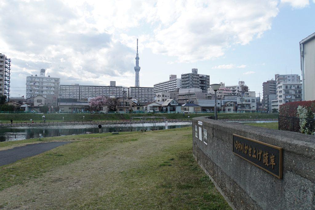 画像 旧中川のかさ上げ護岸(旧堤防)