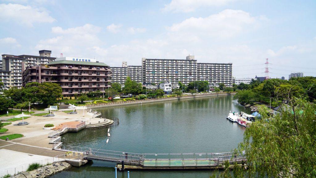 画像 新左近川親水公園の夏の風景
