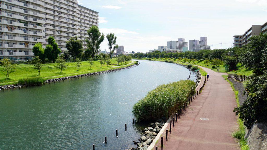 画像 中平井橋の南側の旧中川