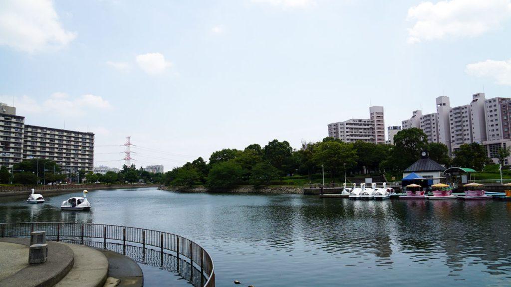 画像 新左近川親水公園の夏の風景1