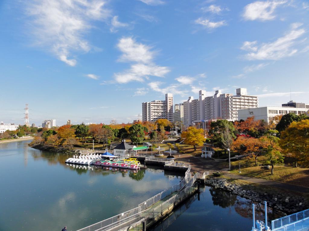 画像 新左近川の秋の風景
