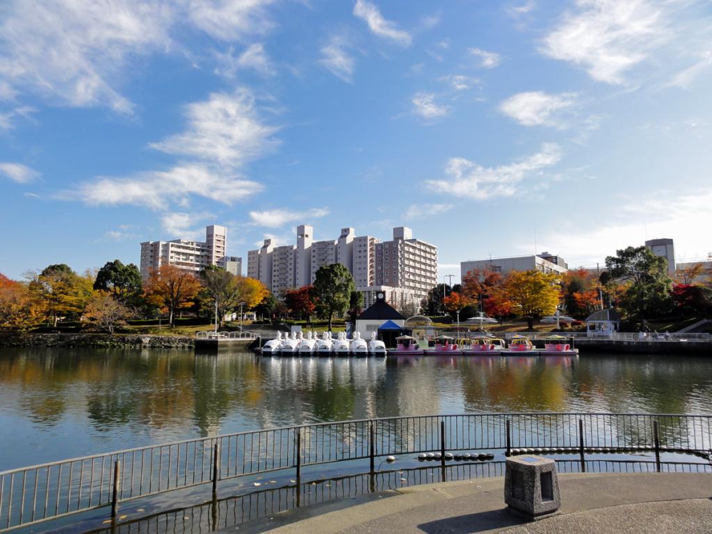 画像 新左近川親水公園の秋の風景
