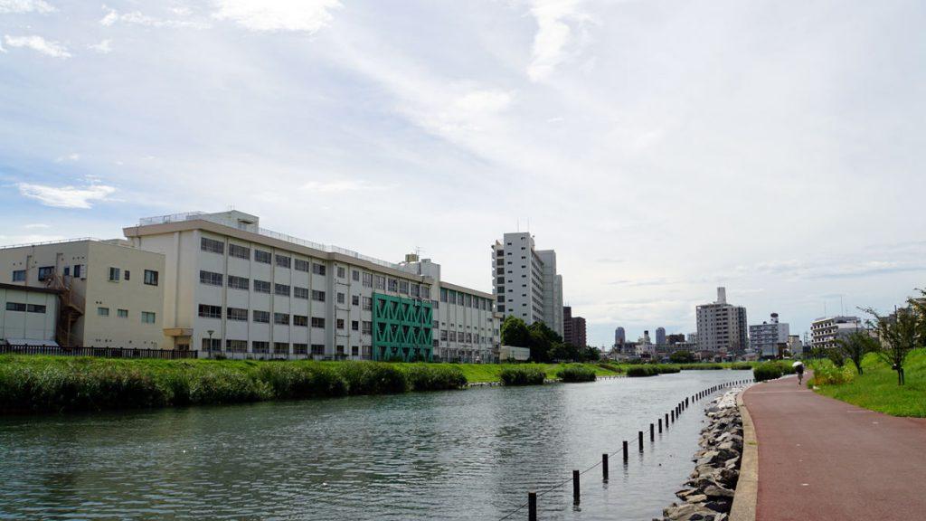 画像 平井橋より下流の風景