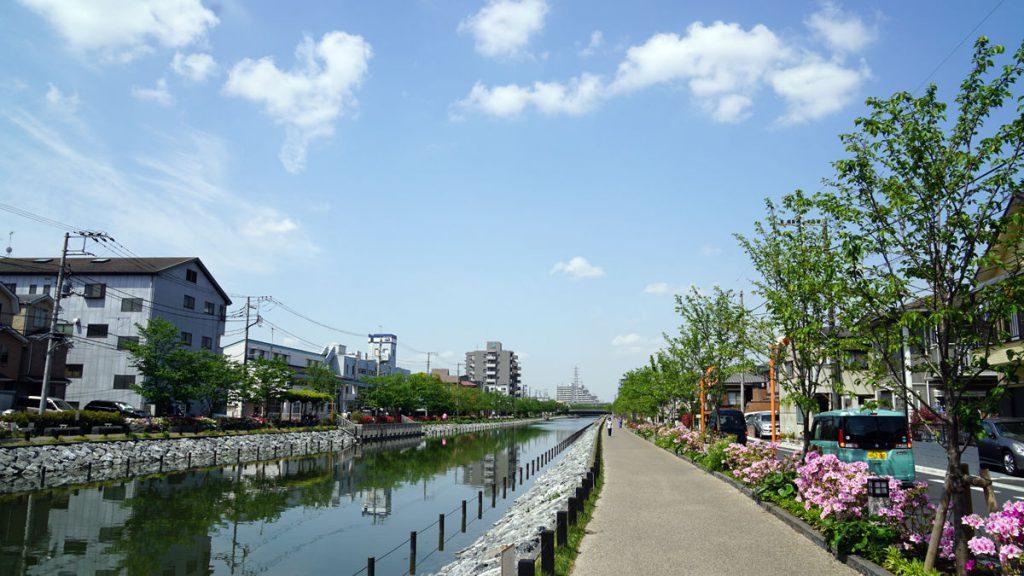 新川 つつじの風景