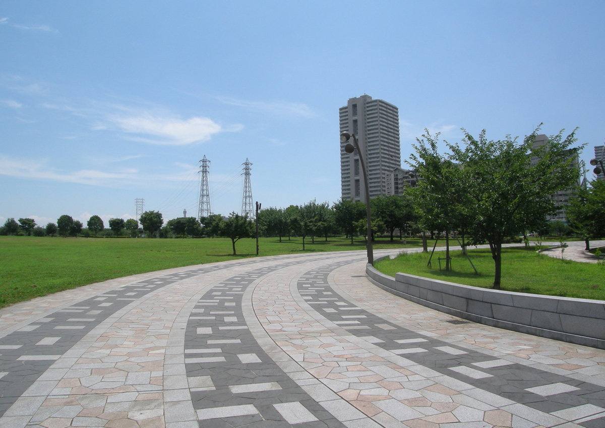 大島小松川公園の夏の風景