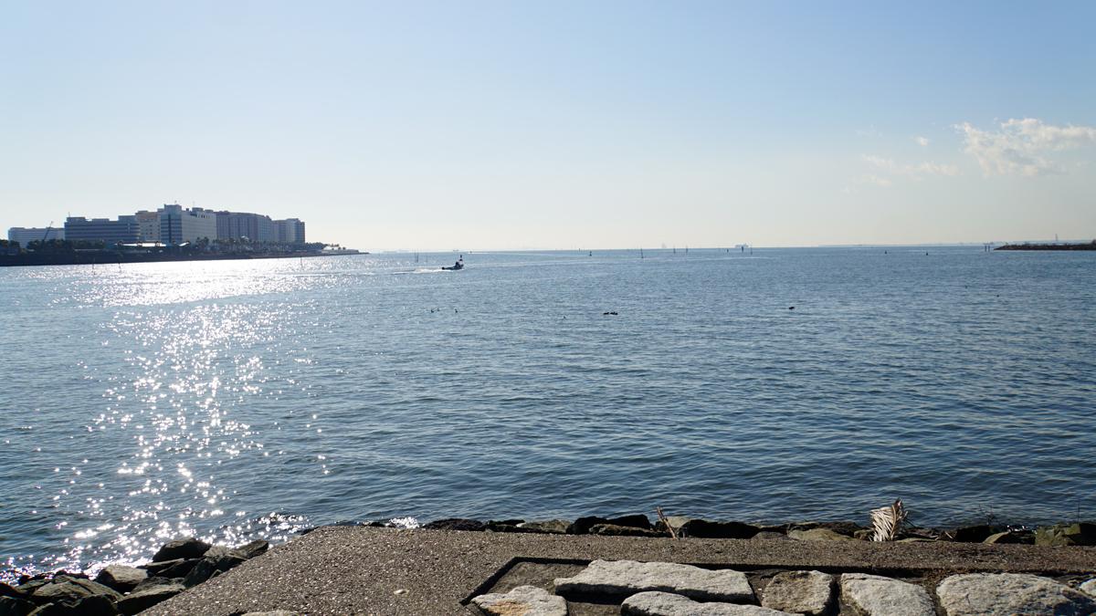 葛西臨海公園から浦安市方面をのぞむ
