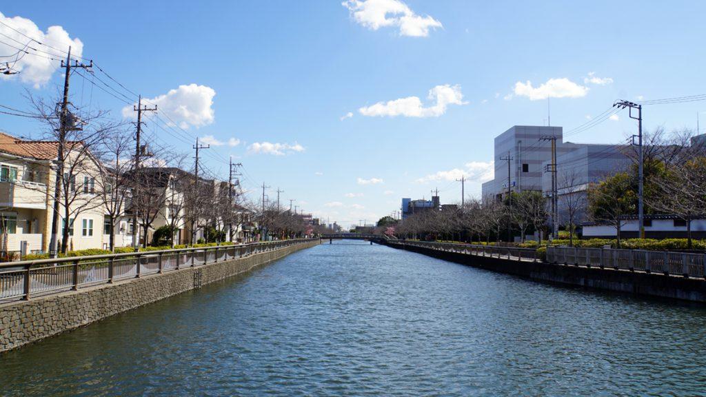 新川(東方面を臨む)
