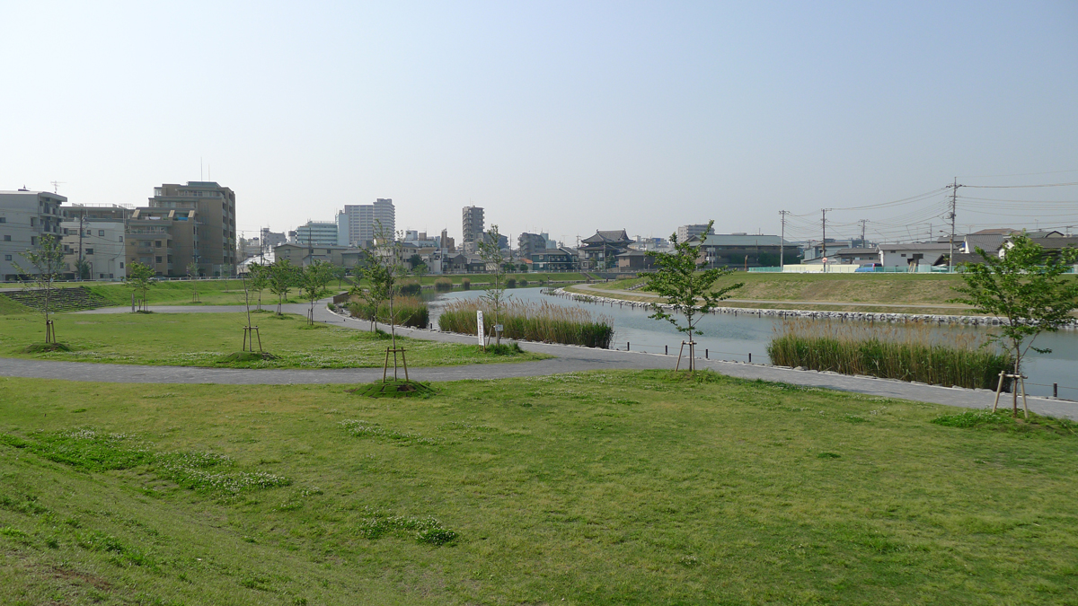 風景 旧中川の風景