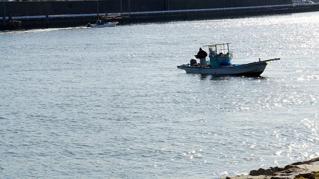 画像 旧江戸川の川漁