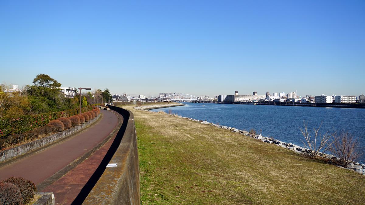 画像 旧江戸川の下流