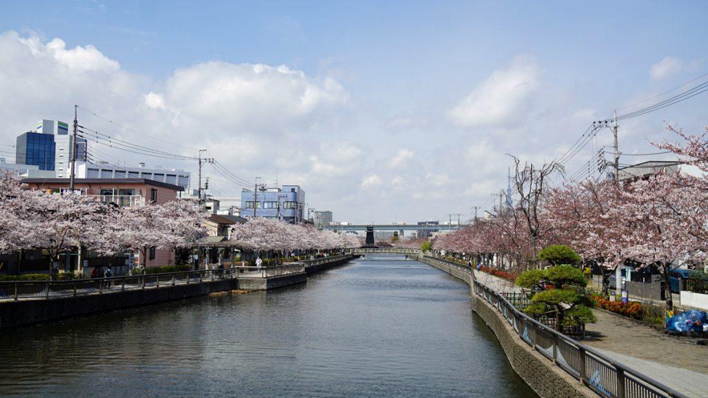 画像 新川の風景