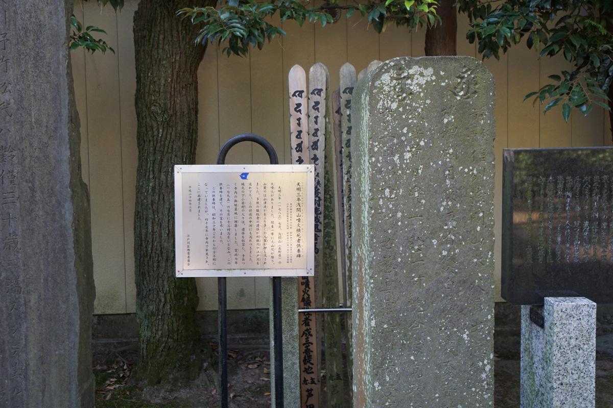 画像 江戸川区 善養寺 天明三年浅間山噴火横死者供養碑