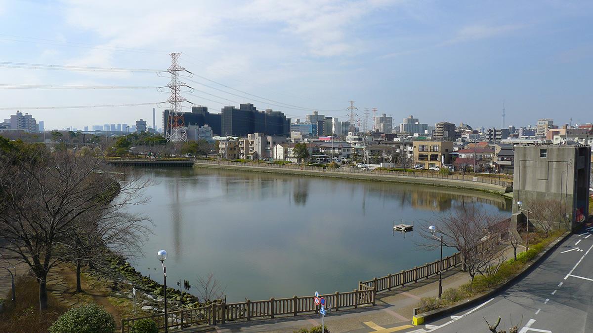 画像 海岸水門2
