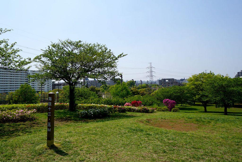 画像 なぎさ公園の<展望の丘>