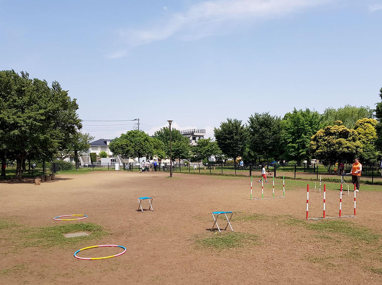 犬のしつけ教室 篠崎公園ドッグラン