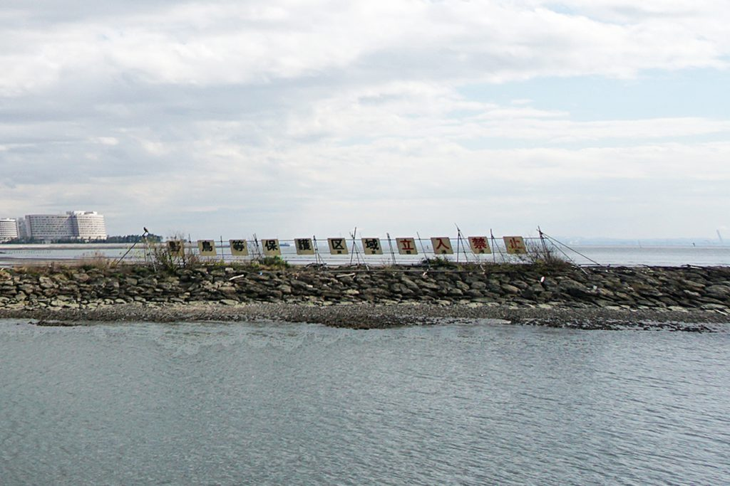 画像 葛西海浜公園の東なぎさに設置されている「野鳥等保護区域立入禁止」の看板
