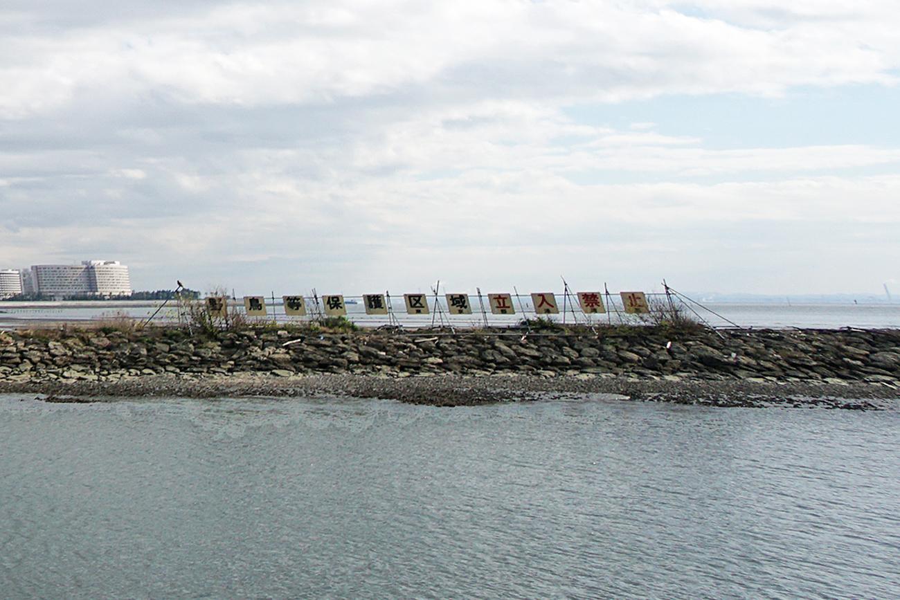 画像 葛西海浜公園 東なぎさ 野鳥等保護区域立入禁止