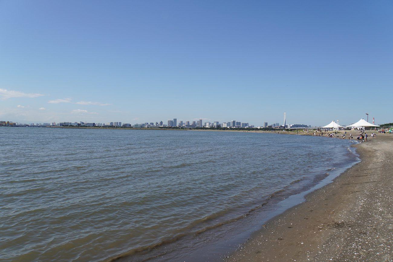 画像 葛西海浜公園 西なぎさの海岸