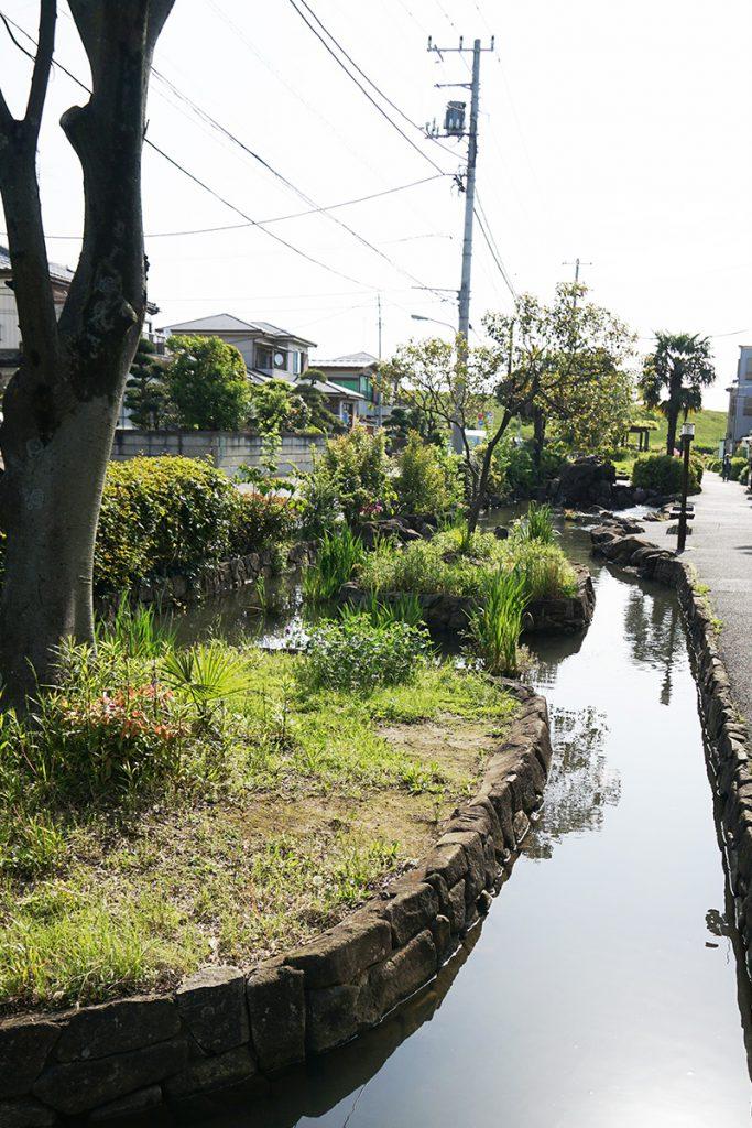 画像 江戸川堤防近くの本郷用水親水緑道