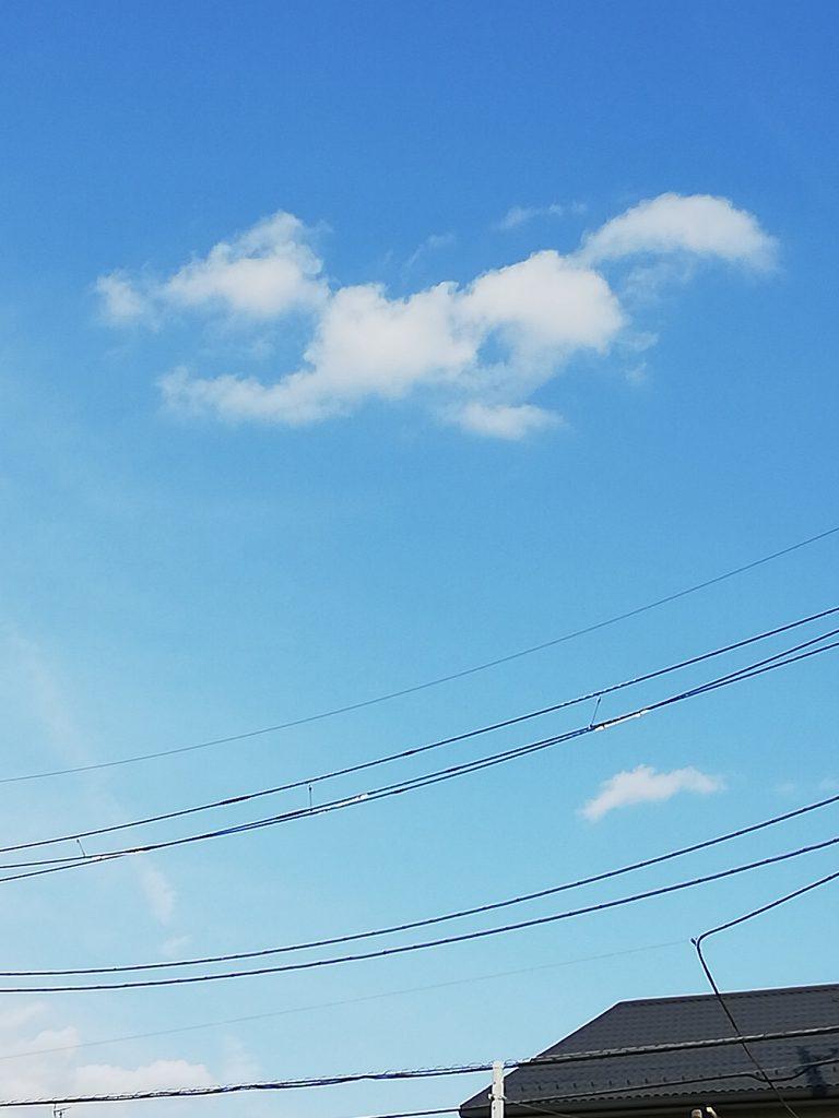 画像 犬に似た雲