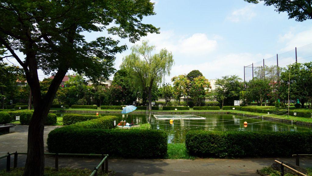 画像 行政公園の釣り池