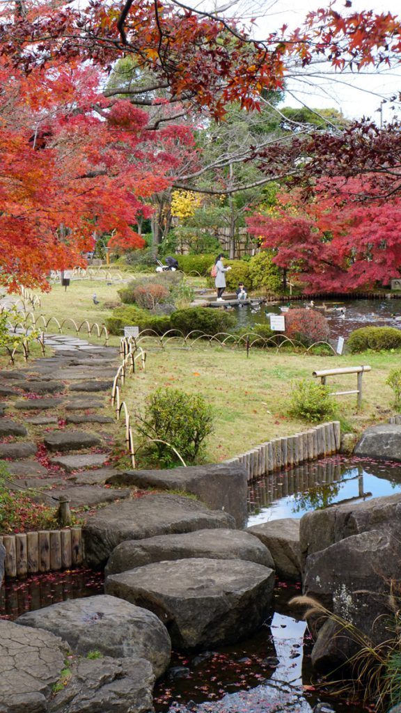 画像 平成庭園の紅葉