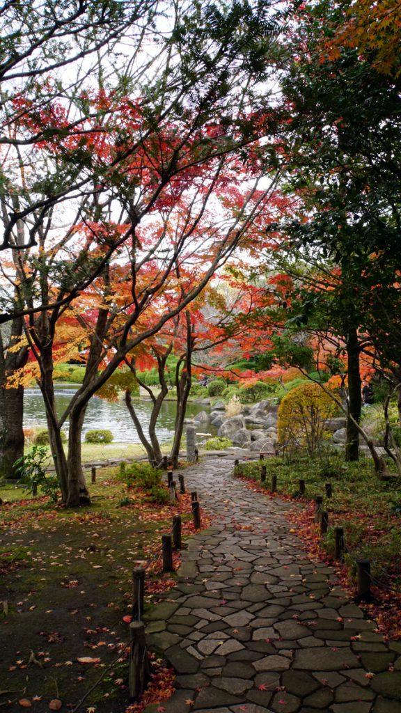 画像 平成庭園の秋の風景